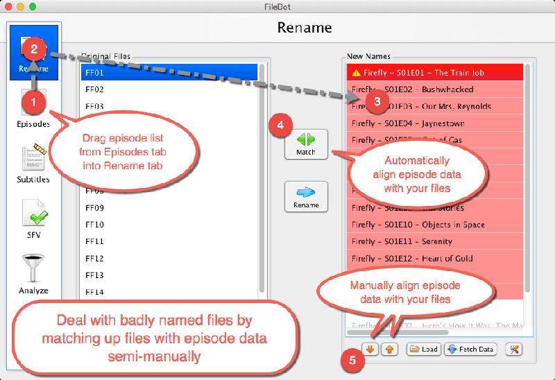 Filebot Organize Episodes