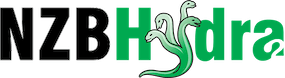 NZB Hydra 2